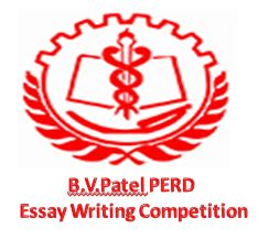 2010 essay sweepstakes